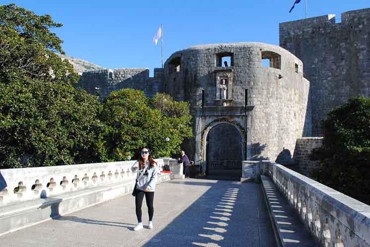 城壁の外から見るピレ門