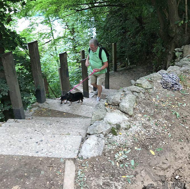 ブレッド城へと続く階段