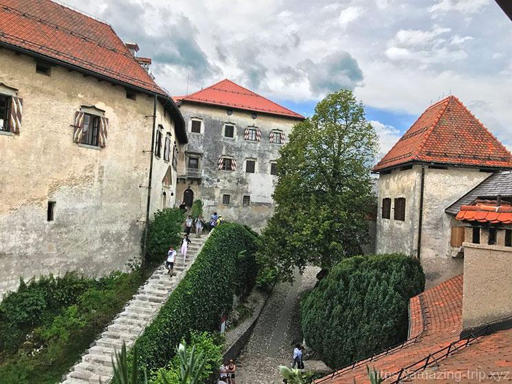 下階 中庭の景観