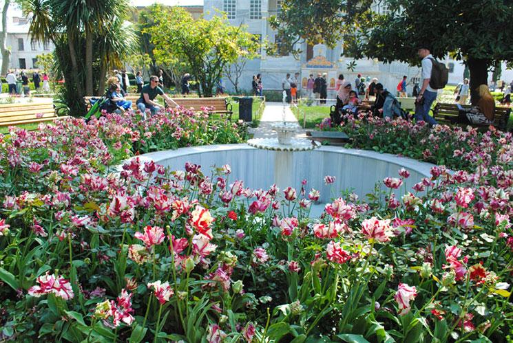 第4庭園 チューリップ庭