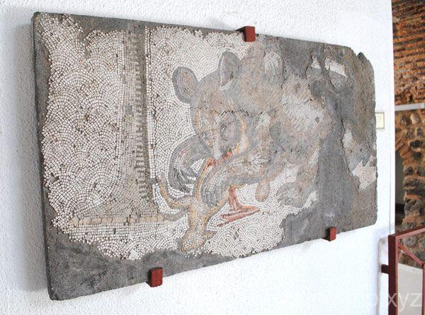 壁に展示されたモザイク画