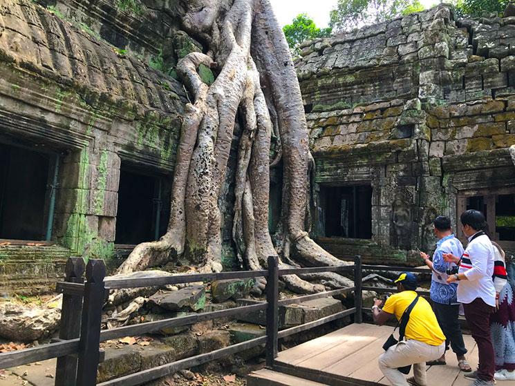 タ・プローム遺跡とガジュマルの樹
