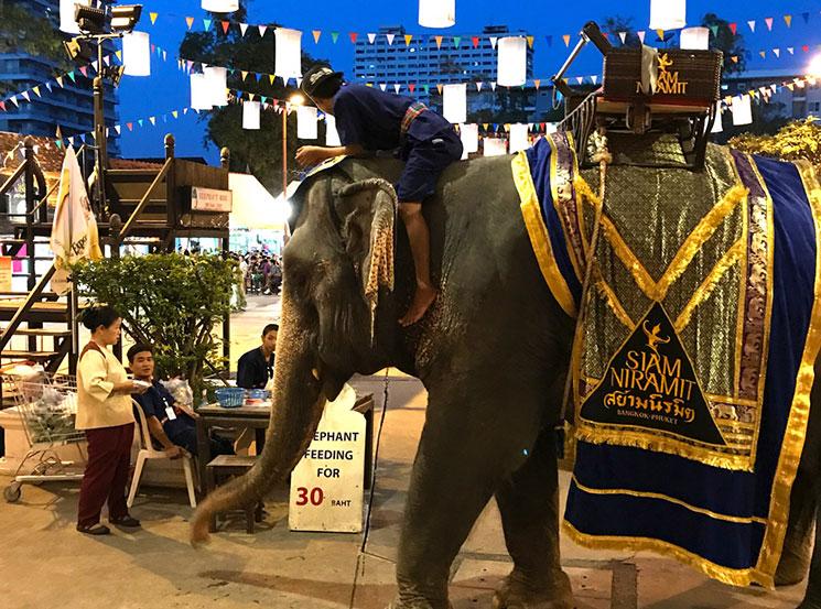サイアム・ニラミットの象