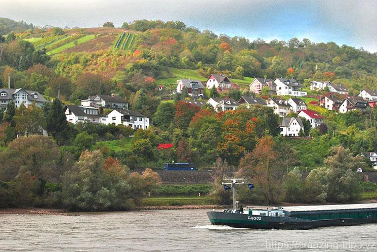 ライン川の景観