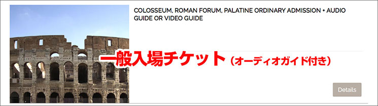 オーディオガイド付きのチケット(COLOSSEUM, ROMAN FORUM, PALATINE ORDINARY ADMISSION + AUDIO GUIDE OR VIDEO GUIDE)