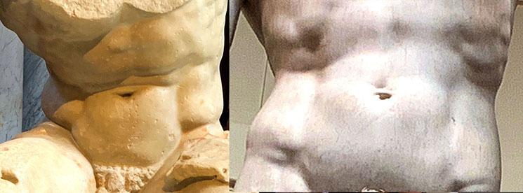 ベルベデーレのトルソとダビデ像の腹筋