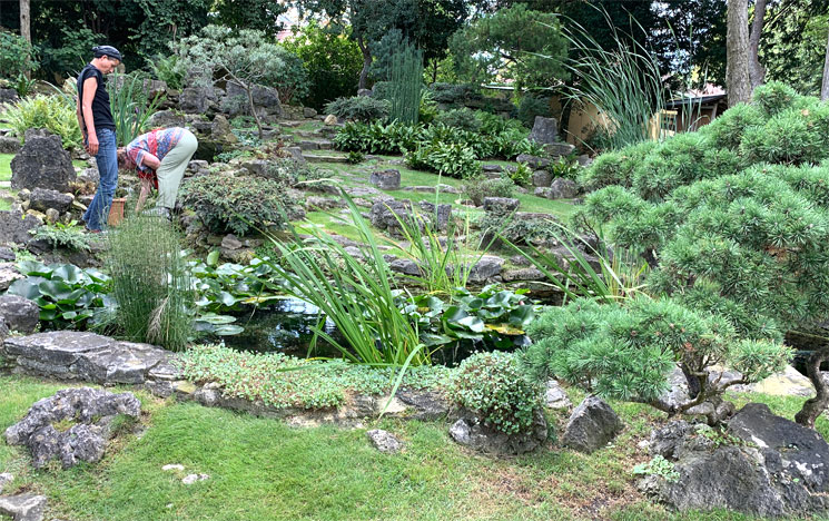 シェーンブルン宮殿の日本庭園