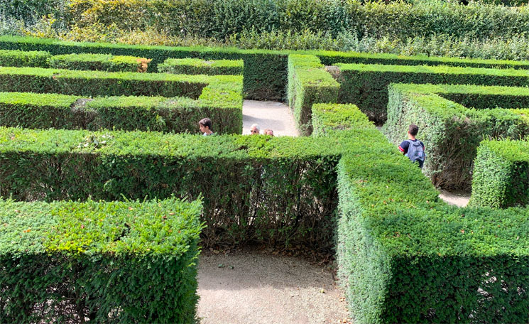 迷路庭園(Maze)