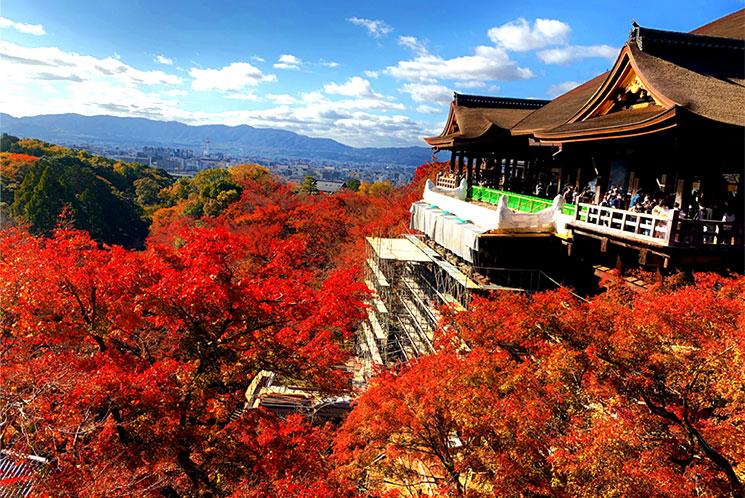 清水寺の本堂と紅葉